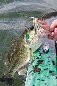 Find The Best Bass Fishing Near You