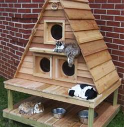 cat building outdoor cat house contemporary outdoor cat house