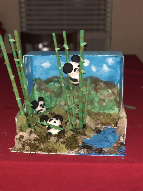 panda bear diorama panda craft panda habitat panda bear
