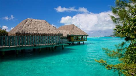 The Best Bora Bora Vacation Packages 2017 Save Up To