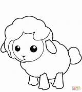 Lamb Coloring Lion Drawing Sheep Printable Colouring Sheet sketch template