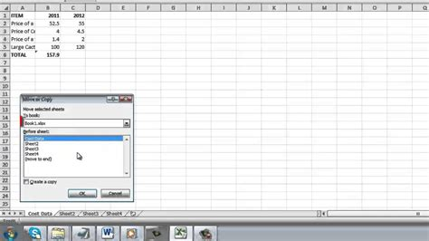 how to copy excel 2010 sheet to another sheet youtube