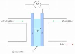 Fonctionnement Pile à Combustible : comprendre le fonctionnement d 39 une pile combustible 1s probl me physique chimie kartable ~ Medecine-chirurgie-esthetiques.com Avis de Voitures