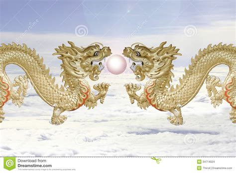 twin dragons  fire ball stock images image