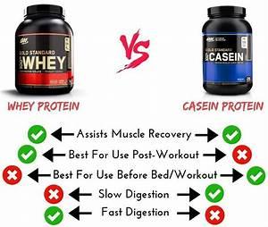 5 Best Casein Protein Powders  2020