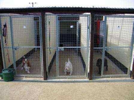 Dog Kennel Designs