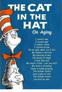 cat in the hat text cat in the hat memes of 2017 on sizzle