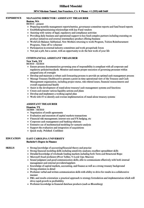 assistant treasurer resume sles velvet