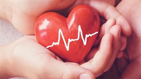 heart  organ donation slogans brandongaillecom