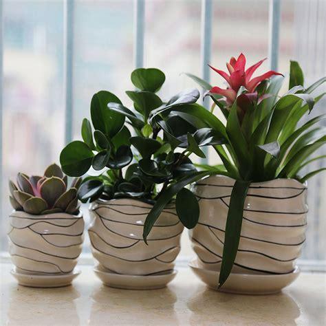 pots ceramic pot plant flower modern planters amazon inch plants york garden strategist three