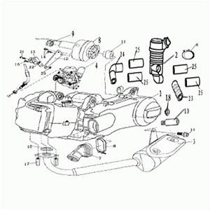 Yerf Dog 150cc Wiring Diagram Go Kart