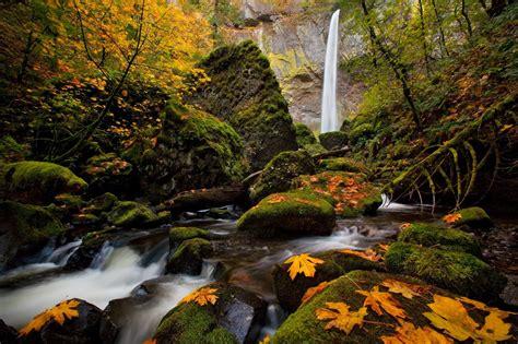 trees autumn season leaves waterfalls wallpaper