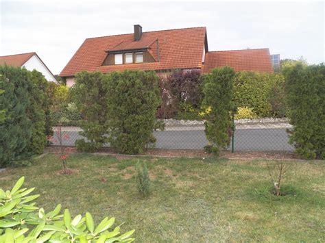 welche heckenpflanzen eignen sich f 252 r die l 252 cken in einer thuja hecke fragen bilder pflanz