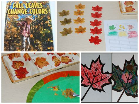 why do fall leaves change colors playfulpreschool the 322 | Fall Leaf Activities