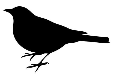 einheimische vögel bilder malvorlage v 195 182 gel ausmalbild 10368 images