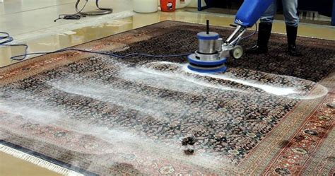 Rug Cleaning Raleigh by Rug Cleaning Raleigh Nc L All Rug Types L Expert Rug Cleaning
