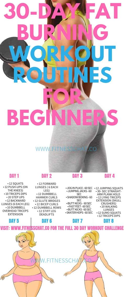 workout routines beginners fat burning