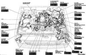 Ford Mustang Eec Wiring Diagram