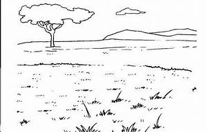 8 Images of Grassland Ecosystem Coloring Pages - World ...