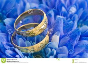 floral engagement rings beautiful blue flowers royalty free stock images image