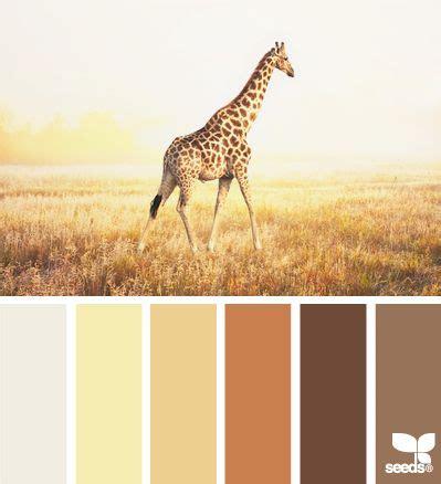 what color are giraffes giraffe tones colors giraffes design