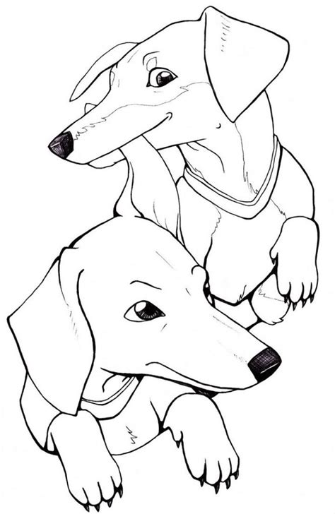 Dachshund Coloring Pages Printable at GetColorings com