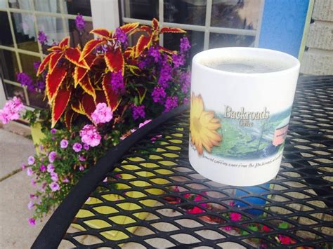 Coffee shop · hayward, wi, united states. Backroads Coffee & Tea Coffee-Sandwich & Bakery Shop Hayward, WI | Bakery shop, Glassware, Backroads