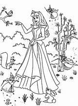 Princess Coloring Aurora Princesa Bela Desenhos Colorear Colorir Pintar Adormecida Imprimir Dibujo Disney Ariel Dibujos Princesas Hada Madrina Activity Support sketch template