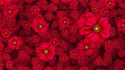Flowers Flower Cool Floral Fundo Moving Vermelho
