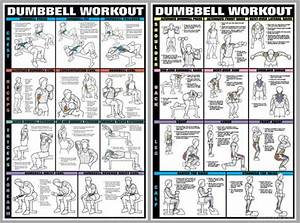 Dumbbell Workout Professional Fitness Wall Charts Two-poster Combo