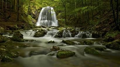 4k Nature Wallpapers Ultra Pc Forest Desktop