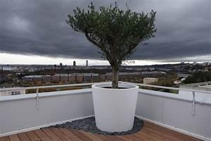 Tres Grand Pot De Fleur Exterieur : grand pot de fleur pergola v g tale le design ~ Dailycaller-alerts.com Idées de Décoration