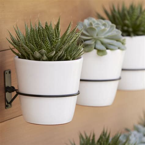 succulent wall planter 20 pretty pots to refresh your succulents
