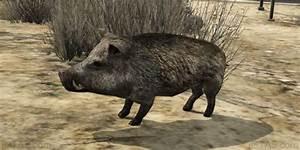 GTA 5 Animals List