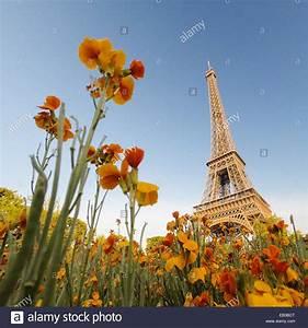 Les Fleurs Paris : paris photos paris images alamy ~ Voncanada.com Idées de Décoration