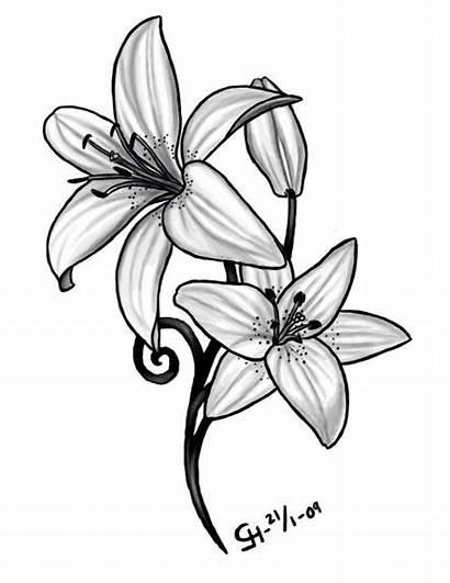 Tattoos Tattoo Birth Flower Daffodil Lily Lilly