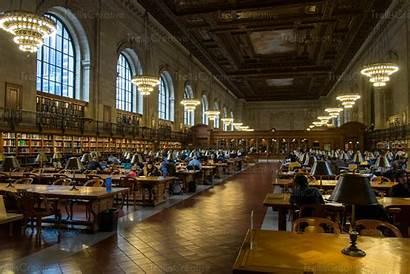 Library Reading York