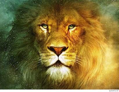 Lion Wallpapers King 1080p Fanpop Picserio Px