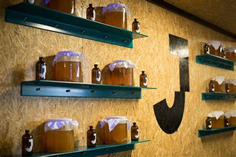 kombucha   fermented tea aiming   big   uk