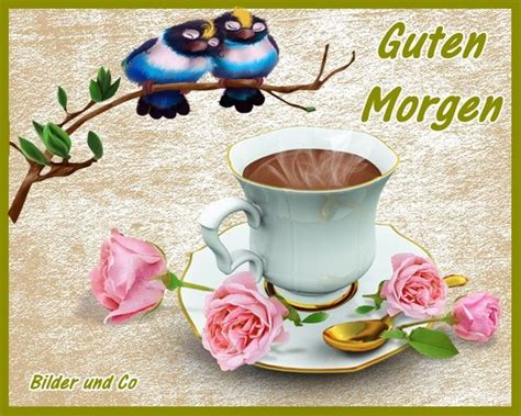 bilder guten morgen grüße guten morgen bilder guten morgen gb pics gbpicsonline