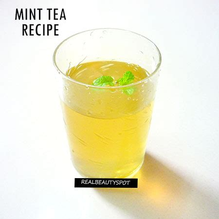how to make fresh tea how to make fresh mint tea theindianspot