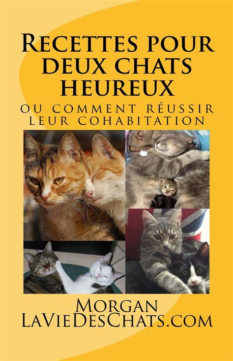 enlever odeur urine chat canap 233 2017 avec conseils de nettoyage apra 168 s un pipi des photos
