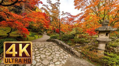 Japanese Garden 4k Resolution 1 Hour Nature Sound For