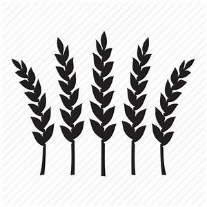 Rye, wheat icon | Icon search engine