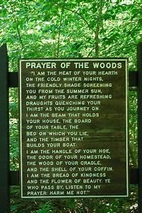 Druids Trees: P... Forest Floor Quotes