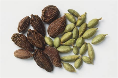 cardamom spice what is cardamom spice and how is it used