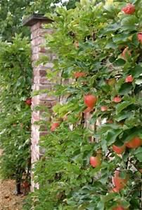 Kleinen Balkon Optimal Nutzen : kleine g rten optimal planen und nutzen garten pflanzen news green24 hilfe pflege bilder ~ Bigdaddyawards.com Haus und Dekorationen