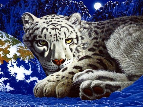 tiger wallpaper wallpapersafari