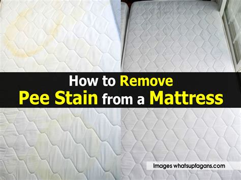 how to remove urine stains from mattress how to remove stain from a mattress