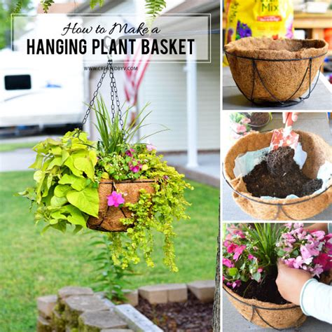 how to make a hanging l how to make a hanging plant basket created by v